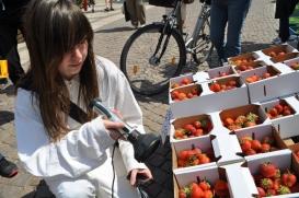Strahlungstest an Erdbeeren/ Foto: BgAL/Ibs